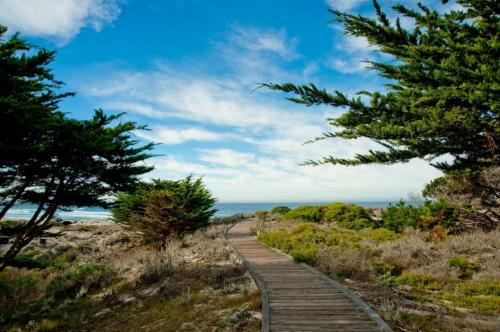 Asilomar Boardwalk